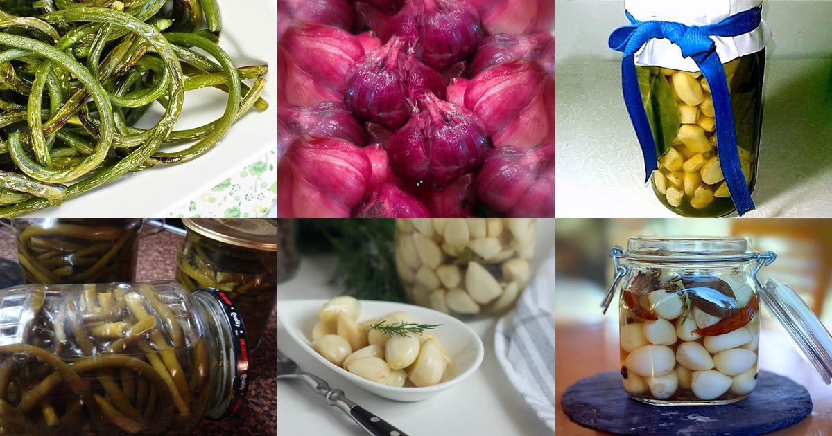 полезные свойства и вред от маринованного чеснока, приготовленного дома