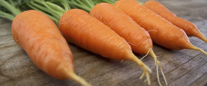 морковь Алтайская лакомка, описание + фото 1