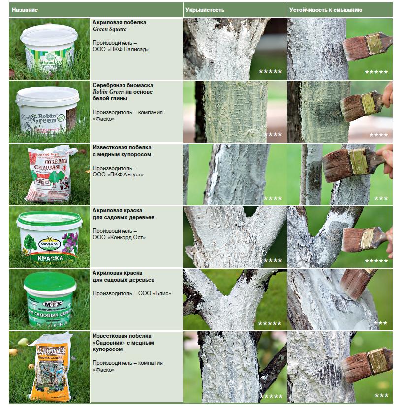 список лучших средств для побелки деревьев