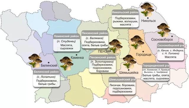 карта грибных мест, куда поехать и где растут опята