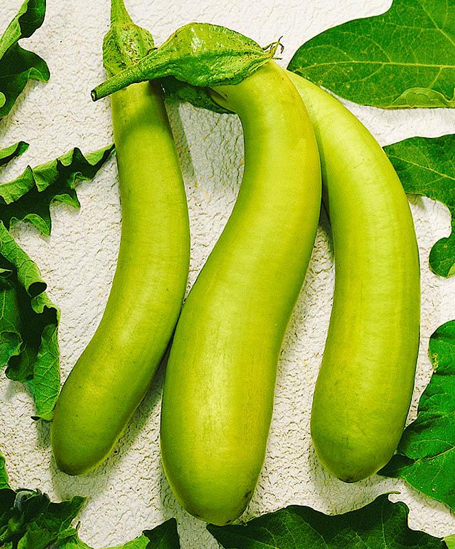 №4 - Зелененький
