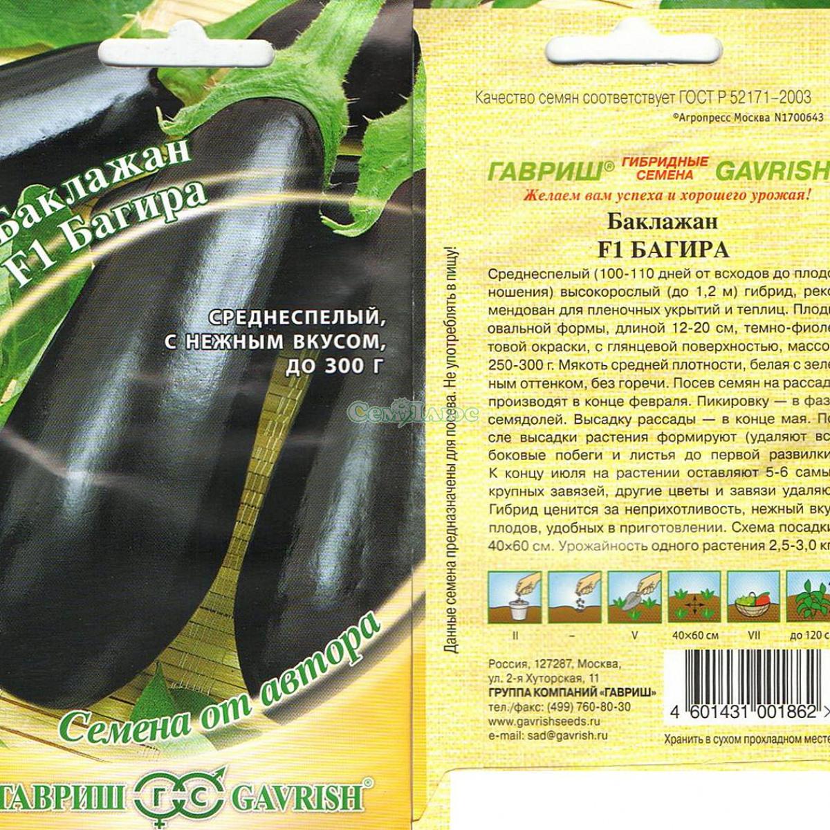 самые урожайные лучшие сорта баклажан для теплицы фото 1