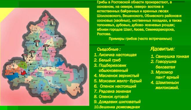 самые грибные места Ростовской области + карта