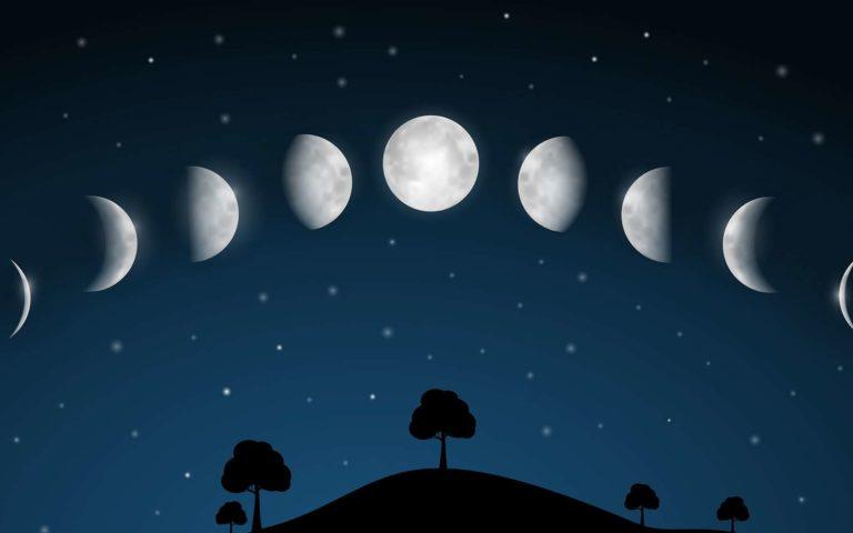 благоприятные дни по Лунному календарю 2020 для посадки фото