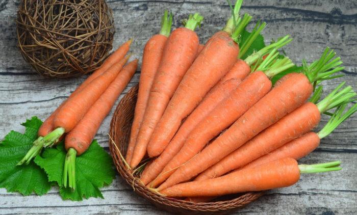 благоприятные дни для посева и посадки моркови в 2020 году фото