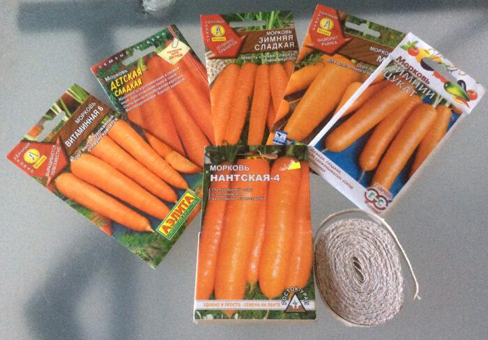 как выбрать сорта моркови фото 2