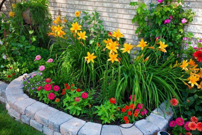 посев и посадка цветов в апреле 2020 года на рассаду и открытый грунт фото