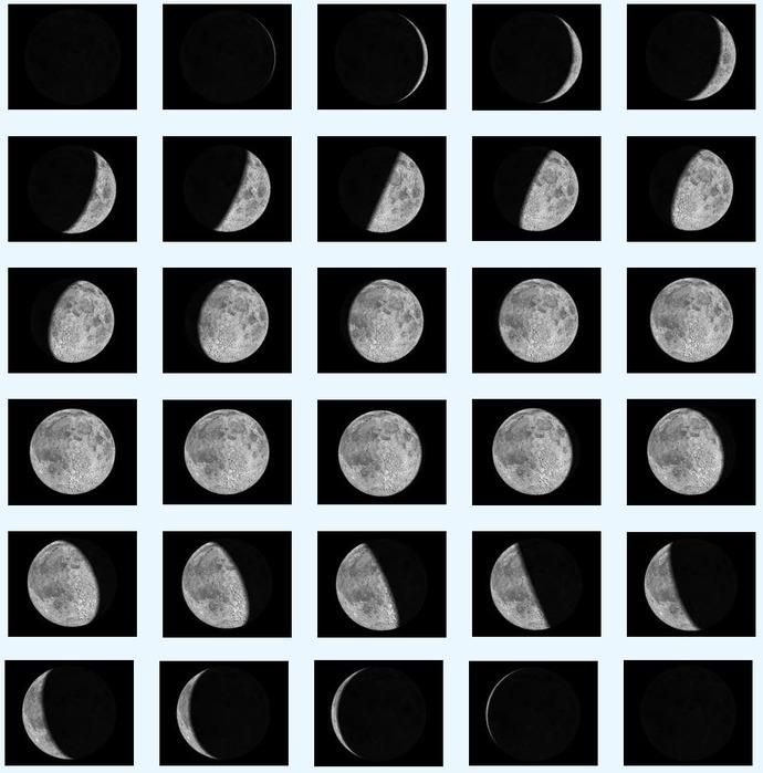 том, фазы луны по дням картинка русском переводе