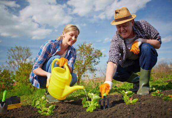 Гортиотерапия в садах: лечение садом