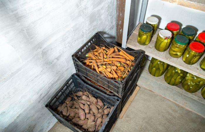 где лучше хранить морковь