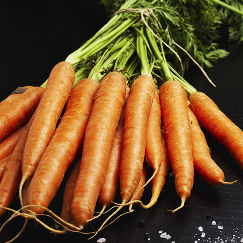 Характеристика и описание сорта моркови Витаминная 6