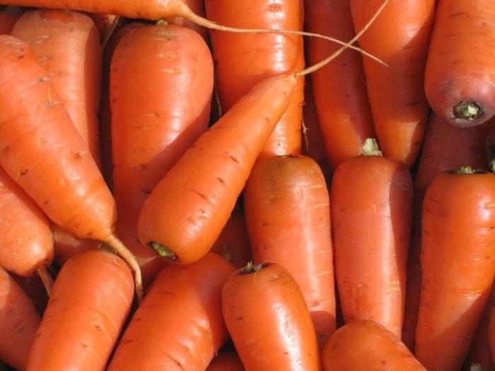 Морковь «Каротель»: описание сорта
