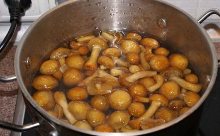 сколько варить грибы перед маринованием
