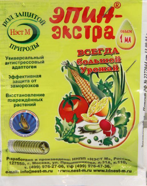 Морковь Болеро f1-позднеспелый гибрид, рекомендации по выращиванию